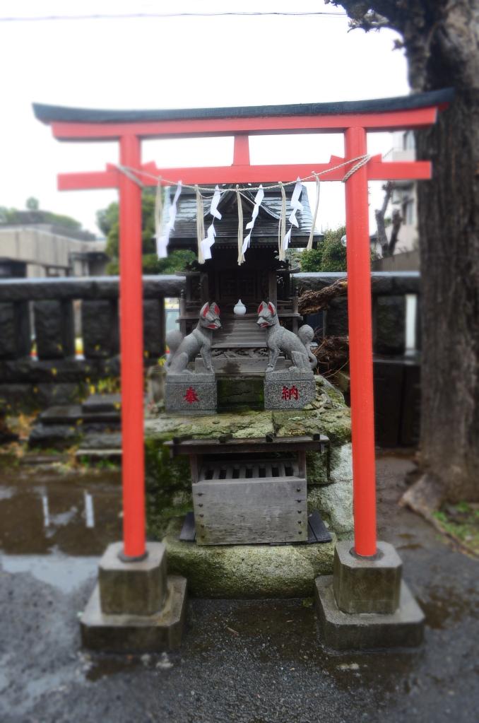 Hikawa Jinja ( 氷川神社 )2