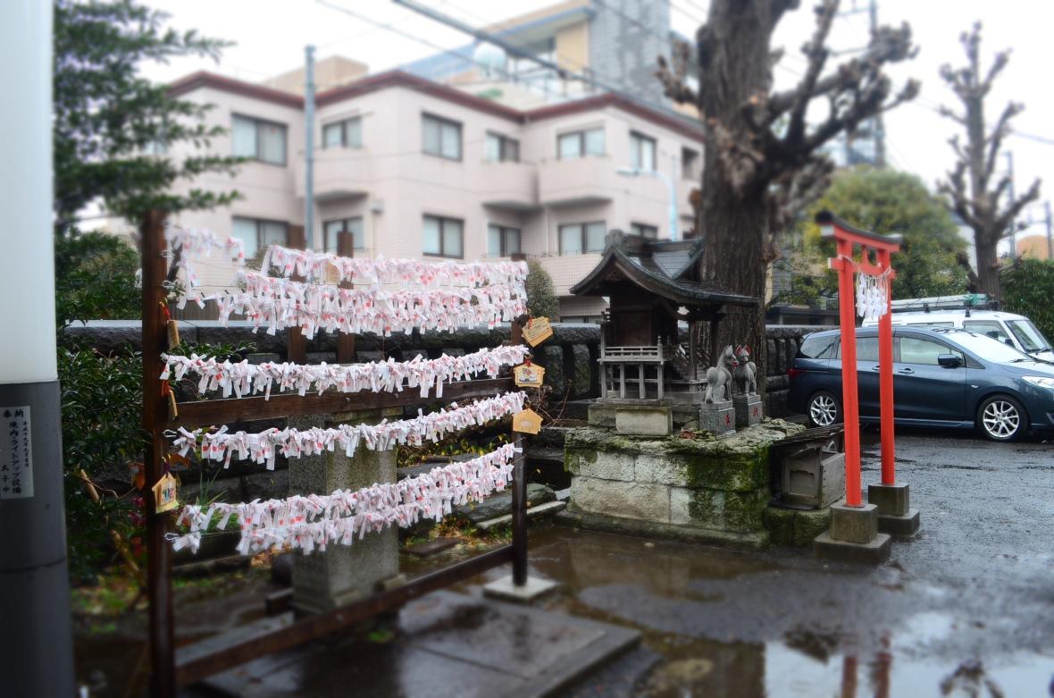 Hikawa Jinja ( 氷川神社 )4
