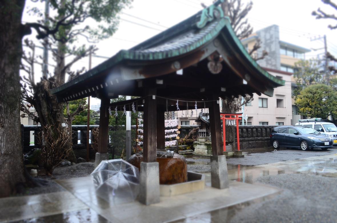Hikawa Jinja ( 氷川神社 )5