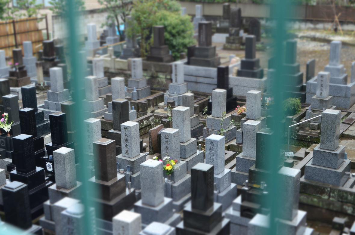 Hikawa Jinja ( 氷川神社 )7